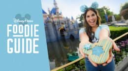 Foodie Guide to Arendelle Aqua at Disney Parks