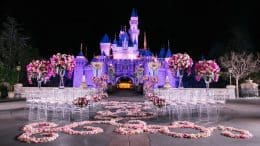 Disney's Fairy Tale Wedding at Disneyland park