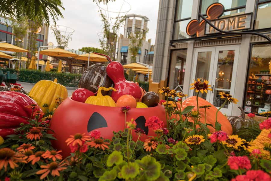 Halloween planters at the Downtown Disney District at Disneyland Resort
