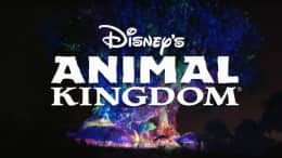 Awakening the Tree of Life for the Holidays at Disney's Animal Kingdom