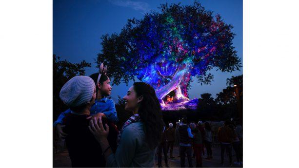 Sneak a Peek at New Holiday Decor Planned for Disney's Animal Kingdom This Season