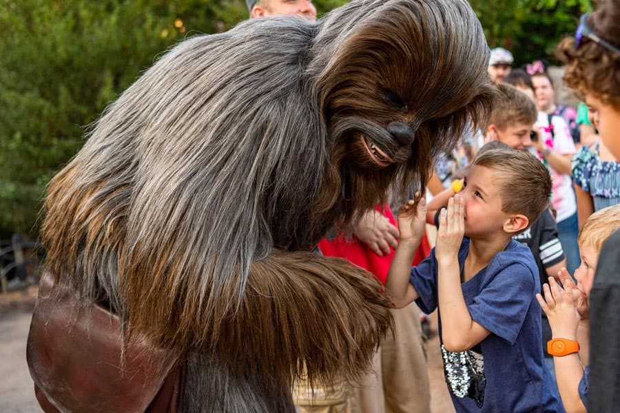 Young boy whispers to Chewbacca in Star Wars: Galaxy's Edge