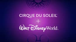 Cirque du Soleil Production Coming to Disney Springs