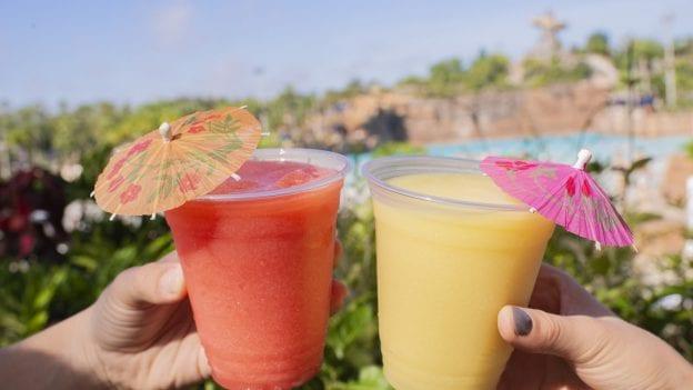 Drinks at Disney's Typhoon Lagoon This Winter