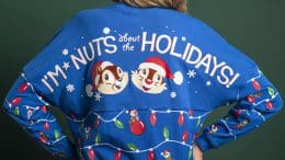 Chip 'n' Dale holiday spirit jersey