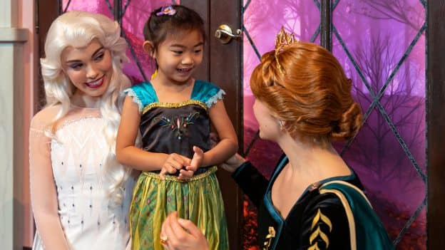 Anna and Elsa character meet and greet
