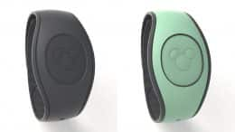 Mint Green and Dark Grey MagicBand