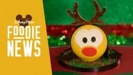 Disney Springs Foodie News: December 2019: Reindeer Pluto Piñata from The Ganachery
