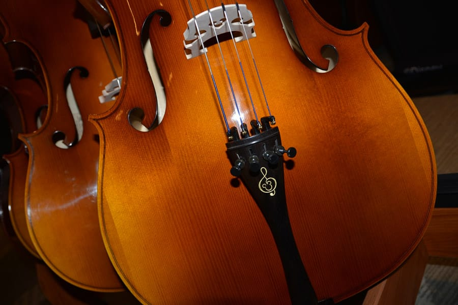 Violin with Festival Disney logo
