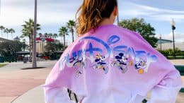 all-new runDisney Spirit Jersey
