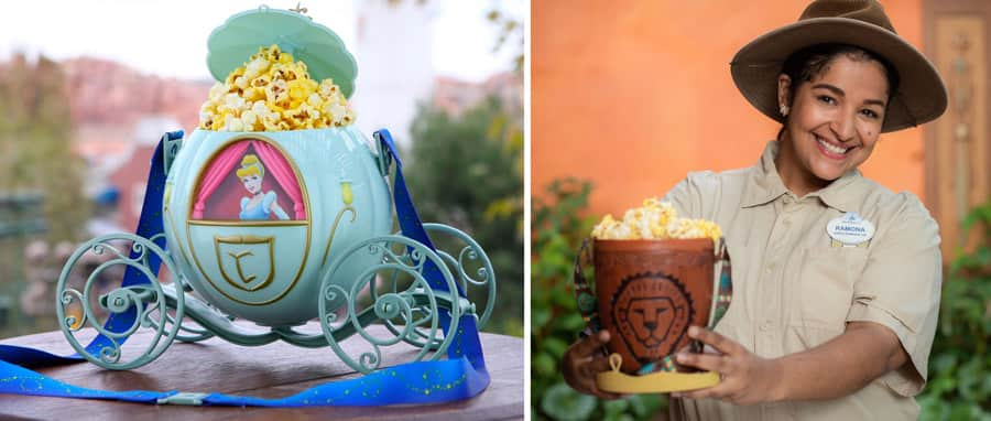 Novelty Popcorn Buckets from Disney Parks