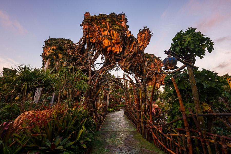 A bridge in Pandora - The World of Avatar at Disney's Animal Kingdom.