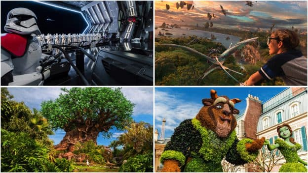 Collage of Walt Disney World experiences