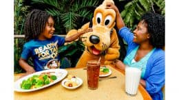 Walt Disney World Dining Plans