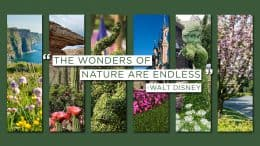 Spectacular Colors of Spring at Disney Parks Around the World