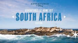 Adventures by Disney Adventures at Home Kit - South Africa Edition