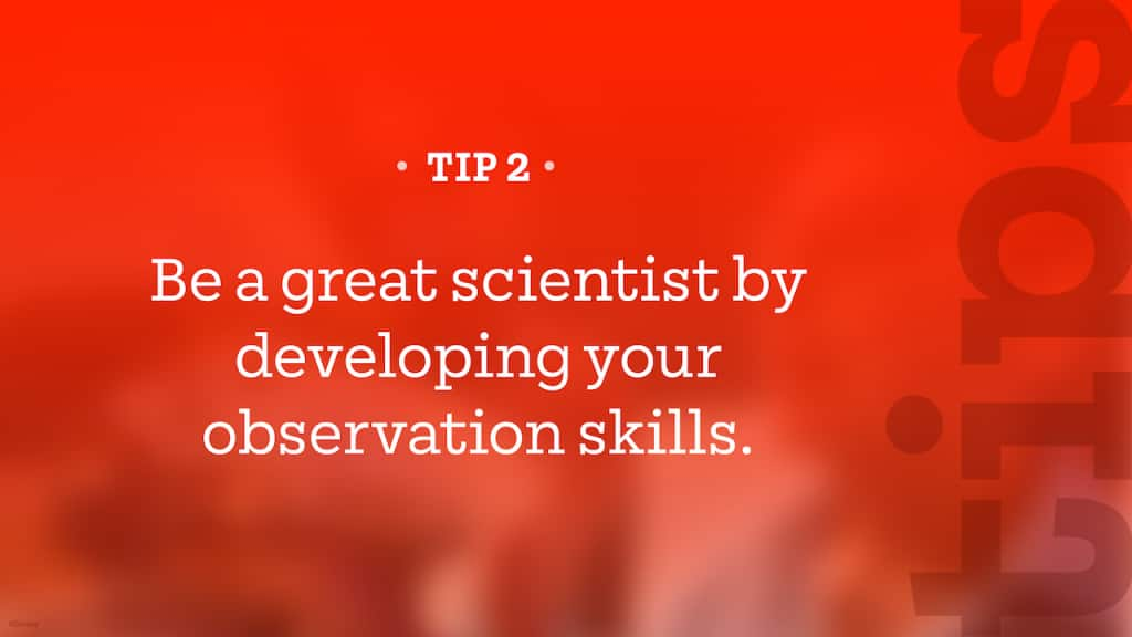 Tip – Be a great scientist by developing your observation skills