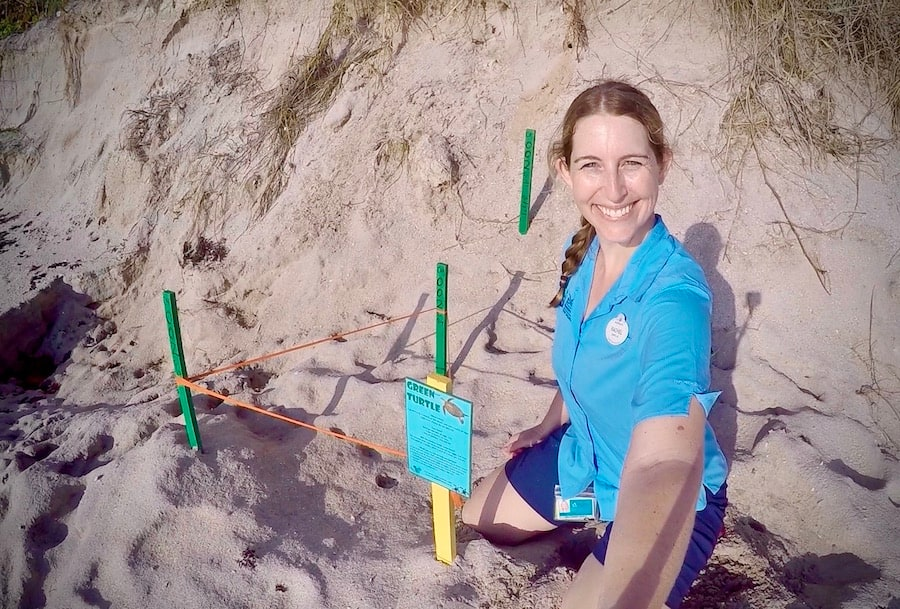 World Sea Turtle Day Report from the Field: Saving Florida's Sea Turtles with Disney Conservation Team Wildlife