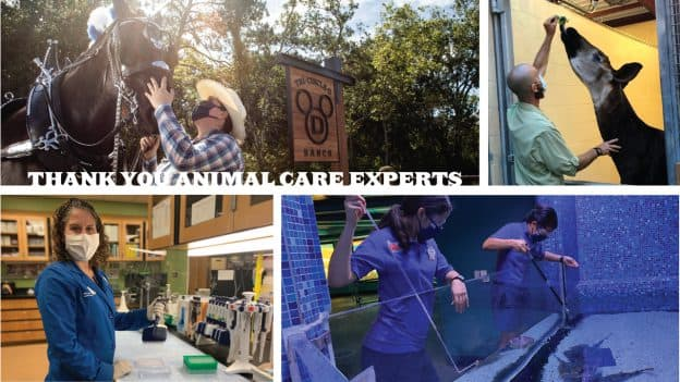 Thank You Animal Care Experts