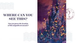 Where Can You See This? Disney Vacation Club Edition