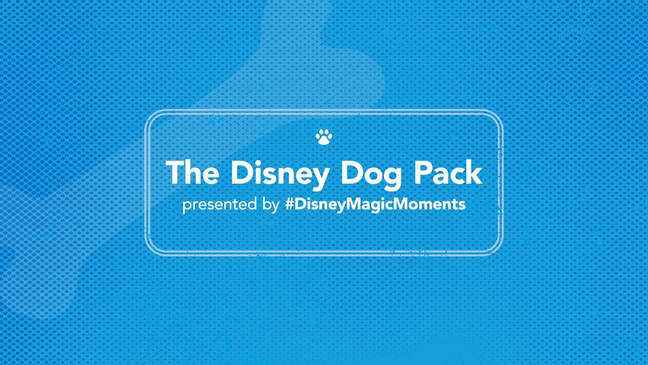 #DisneyMagicMoments: Ulti-Mutt Disney Dog Pack of Activities on International Dog Day Includes 'Park Bark' Snacks, DIY Treat Jar and More