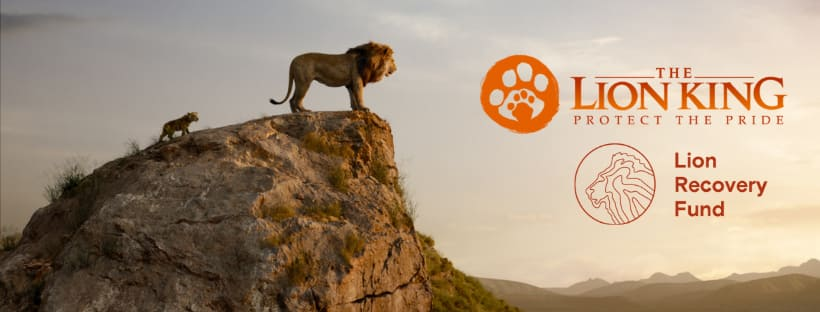 The Lion King Protect The Pride Lion Recovery Fund