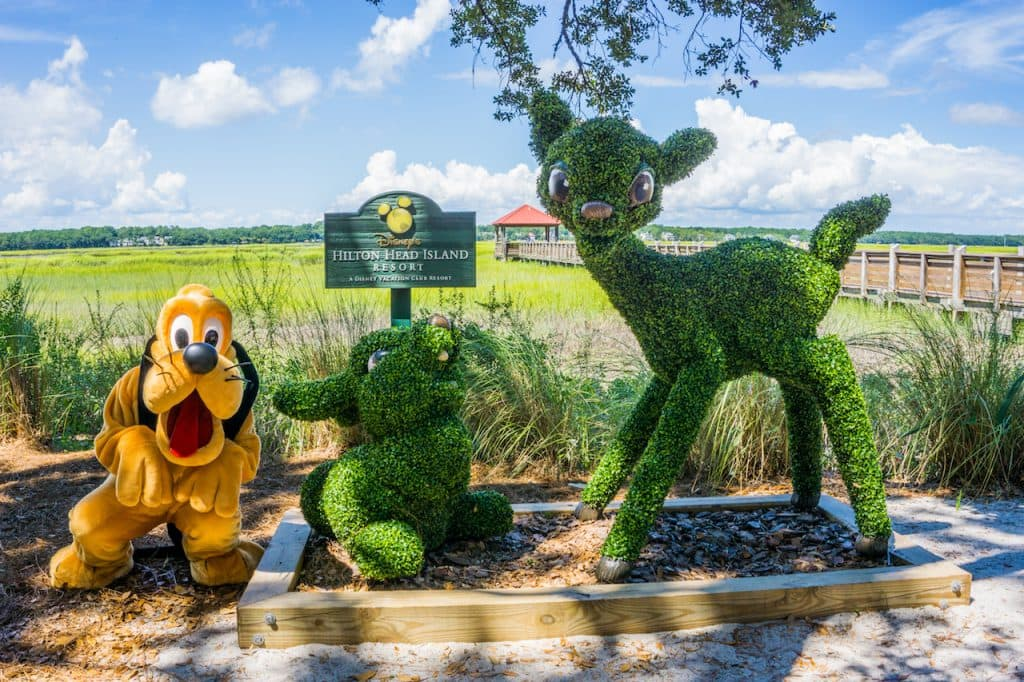 Pluto at Disney's Hilton Head Resort