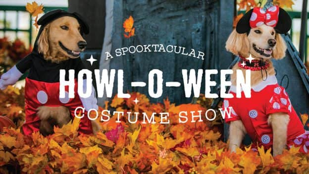 A Spooktacular Howl-O-Ween Costume Show