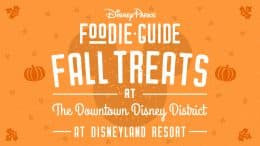 Foodie Guide to 2020 Fall Treats at the Downtown Disney District at Disneyland Resort