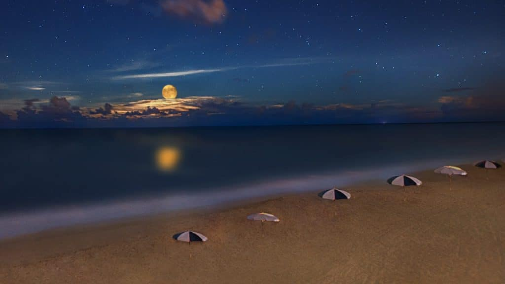 Moon over the beach at Disney's Vero Beach Resort