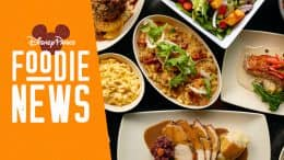 Disney Parks Foodie News: New Offerings and Restaurant Updates at Disney's Hollywood Studios
