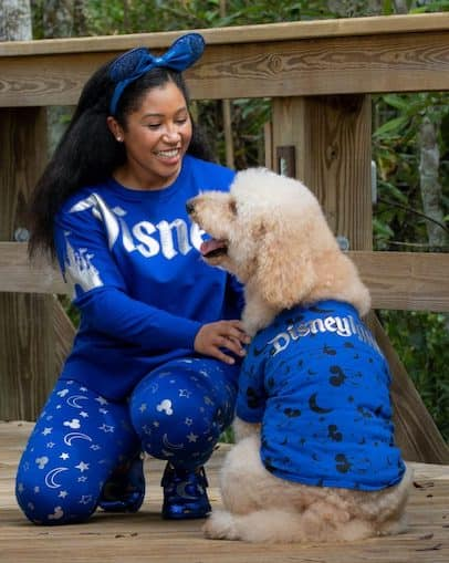 Wishes Come True Blue Minnie Mouse Ear headband, spirit jersey and dog outfit