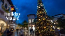 Holiday Magic at Disney Springs