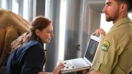 Science Operations Director Dr. Mandi looks at an ultrasound for white rhino Kendi