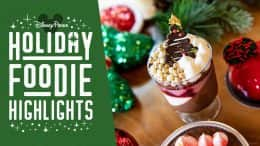 Holiday Highlights – Disney Springs