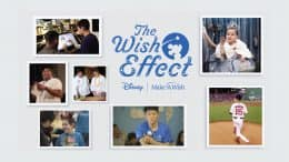 #TheWishEffect collage
