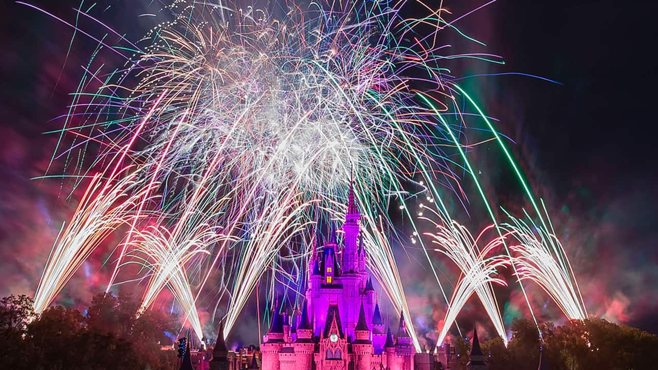 Disney World - cover