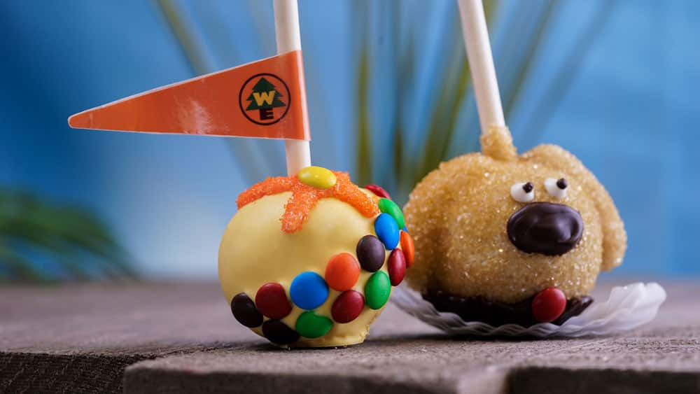 Dug Cake Pop and Russell Cake Pop