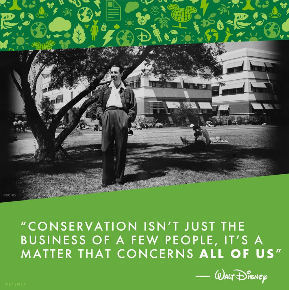 """Walt Disney Quote - """"Conservation isn't just the business of a few people – it's a matter that concerns all of us."""""""