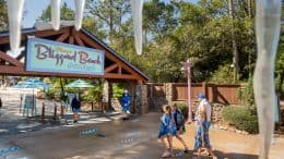 Guests and cast members at the entrance of Disney's Blizzard Beach at Walt Disney World Resort