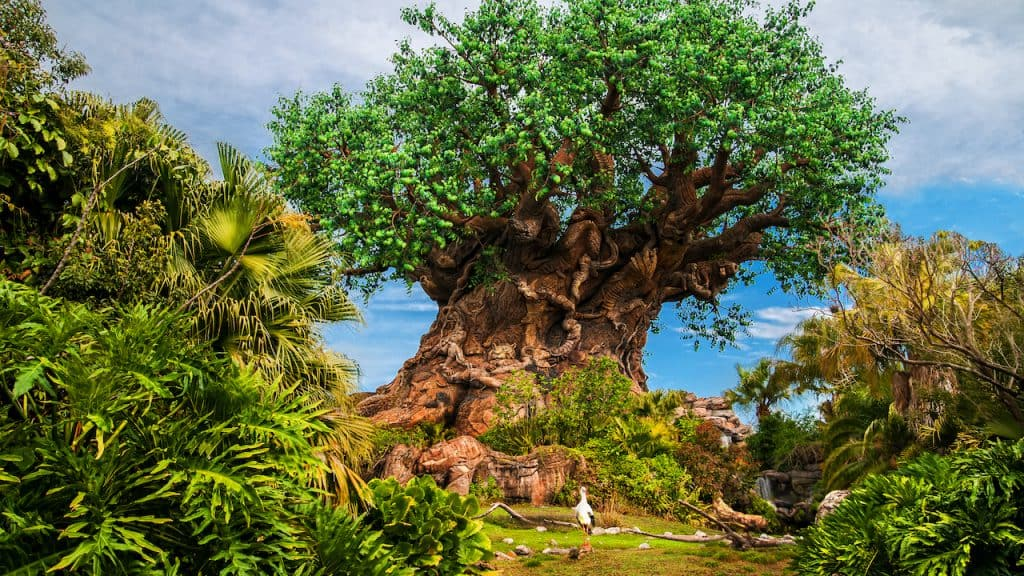 Tree of Life at Disney's Animal Kingdom Earth Month 2021 Disney's Animal Kingdom