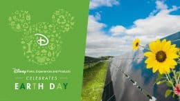 Disney Parks, Experiences and Products Celebrates Earth Day: Walt Disney World's solar facilities