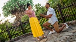 Couple. Proposing. PhotoPass