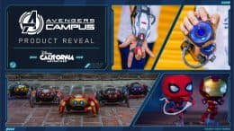 Collage of merchandise items found at Avengers Campus