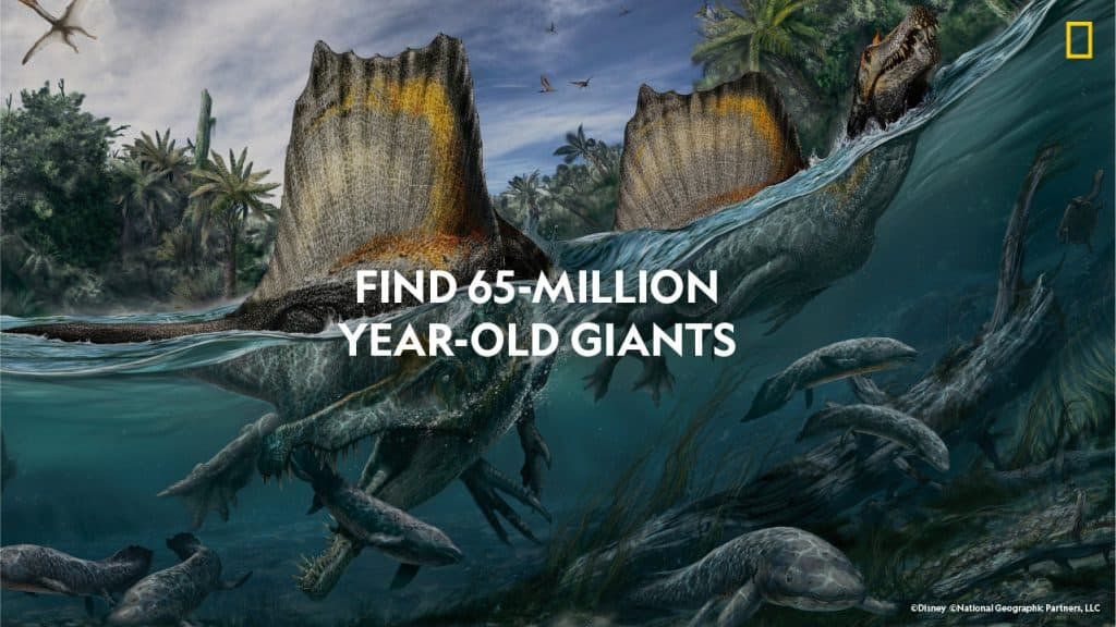 Find 65-million year-old giants. Sea creatures