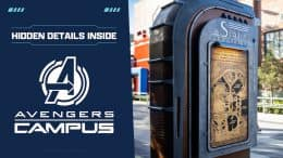 Graphic for hidden details in Avengers Campus