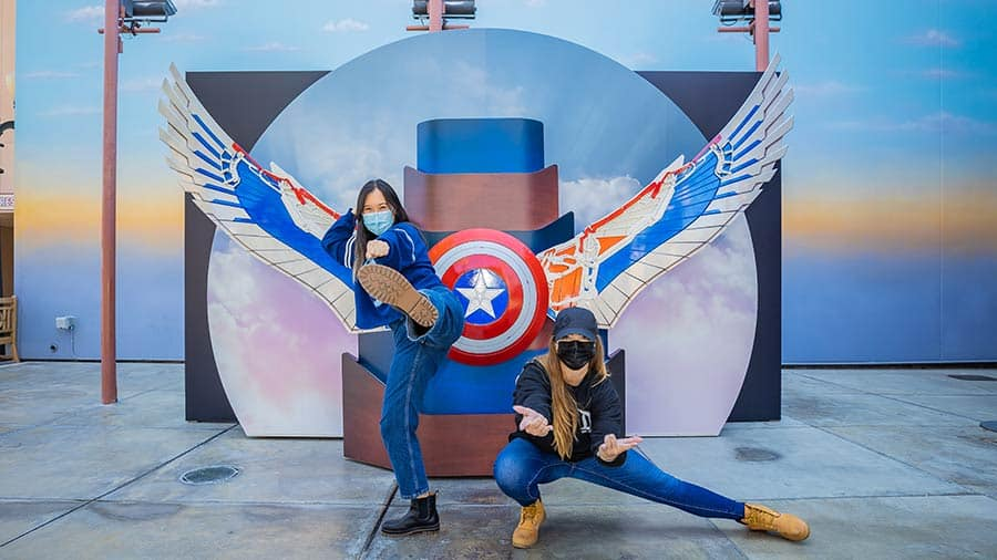 """""""The Falcon and the Winter Soldier"""" backdrop"""