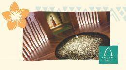 Graphic of Laniwai, A Disney Spa at Aulani, a Disney Resort & Spa