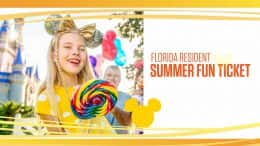 Graphic for new Florida Resident Summer ticket