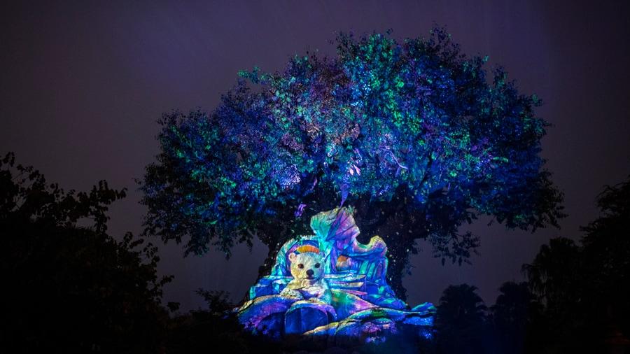 Holiday edition of Tree of Life Awakenings at Disney's Animal Kingdom Theme Park